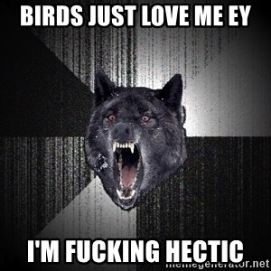 flniuydl - BIRDS JUST LOVE ME EY I'M FUCKING HECTIC