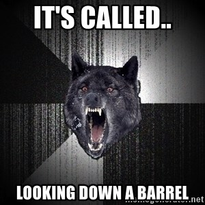 flniuydl - IT'S CALLED.. LOOKING DOWN A BARREL