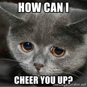 Sad Cute Cat - how can i cheer you up?