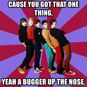 typical 1D - CAUSE YOU GOT THAT ONE THING, YEAH A BUGGER UP THE NOSE.