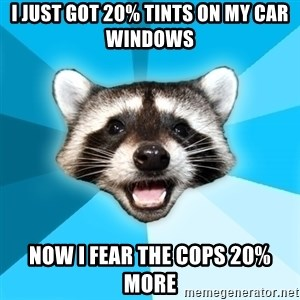 Lame Pun Coon - i just got 20% tints on my car windows now i fear the cops 20% more