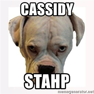 stahp guise - Cassidy  Stahp