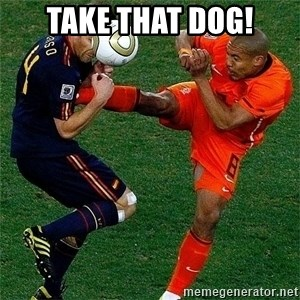 Netherlands - TAKE THAT DOG!