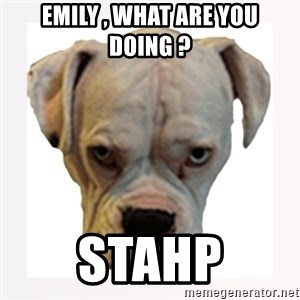stahp guise - emily , what are you doing ? stahp
