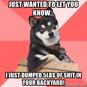Cool Dog - JUST WANTED TO LET YOU KNOW... I JUST DUMPED 5LBS OF SHIT IN YOUR BACKYARD!