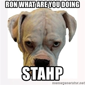 stahp guise - ron what are you doing stahp