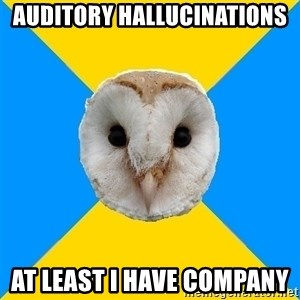 Bipolar Owl - auditory hallucinations at least i have company
