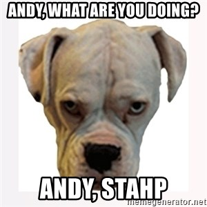 stahp guise - andy, what are you doing? andy, stahp