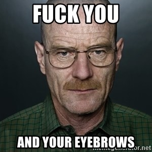 Walter White - Fuck You And your eyebrows