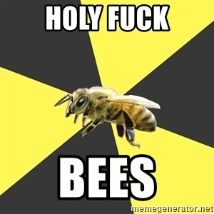 British High School Honeybee - holy fuck bees