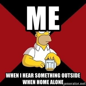 Homer Jay Simpson - ME  WHEN I HEAR SOMETHING OUTSIDE WHEN HOME ALONE