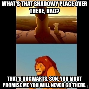 Lion King Shadowy Place - What's that shadowy place over there, dad? That's hogwarts, Son. YOu must promise me you will never go there.