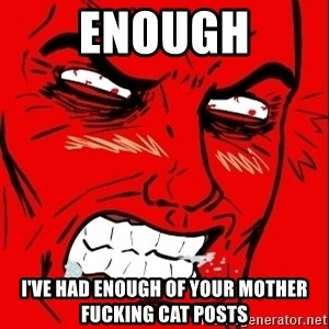 Rage Face - ENOUGH i'VE HAD ENOUGH OF YOUR MOTHER FUCKING CAT POSTS