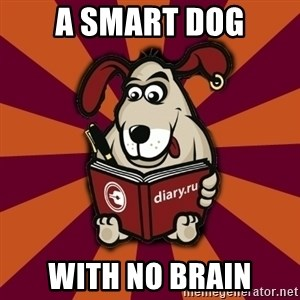 Typical-Diary-Dog - A SMART DOG WITH NO BRAIN