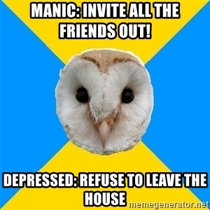 Bipolar Owl - MANIC: INVITE ALL THE FRIENDS OUT! DEPRESSED: REFUSE TO LEAVE THE HOUSE