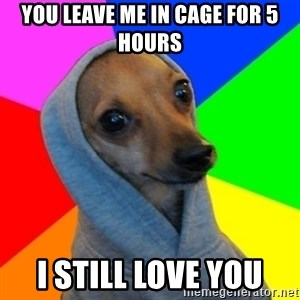 Good Guy Greg's dog - YOU LEAVE ME IN CAGE FOR 5 HOURS I STILL LOVE YOU