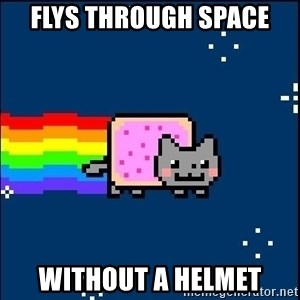 Irresponsible Nyan Cat - FLYS THROUGH SPACE  WITHOUT A HELMET