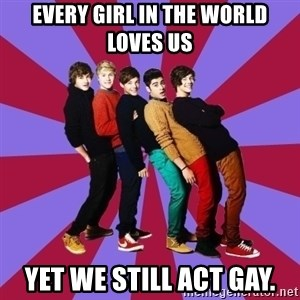 typical 1D - EVERY GIRL IN THE WORLD LOVES US YET WE STILL ACT GAY.
