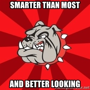 Bedford Bulldog - Smarter Than most and better looking