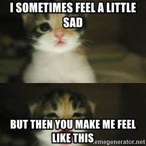 Adorable Kitten - i sometimes feel a little sad but then you make me feel like this