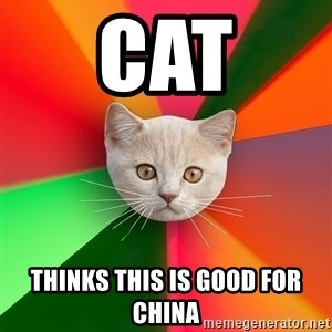 Advice Cat - Cat thinks this is good for china