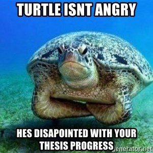 disappointed turtle - turtle isnt angry hes disapointed with your thesis progress