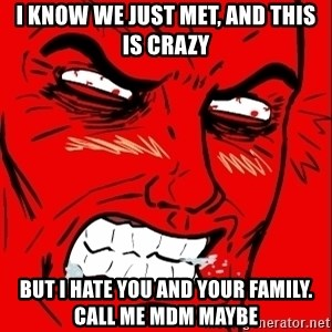 Rage Face - I know we just met, and this is crazy but i hate you and your family. call me mdm maybe