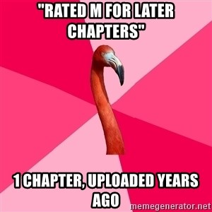 """Fanfic Flamingo - """"rATED M FOR LATER CHAPTERS"""" 1 chapter, uploaded years ago"""