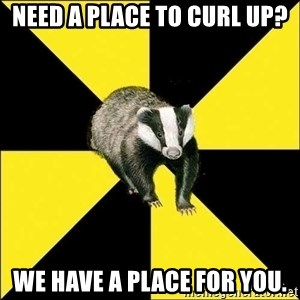 PuffBadger - need a place to curl up? we have a place for you.