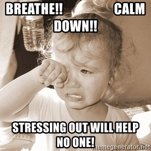 Distressed Toddler - breathe!!                    calm down!! stressing out will help    no one!