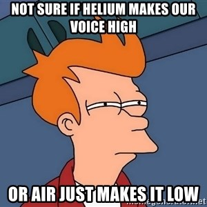 Futurama Fry - not sure if helium makes our voice high or air just makes it low
