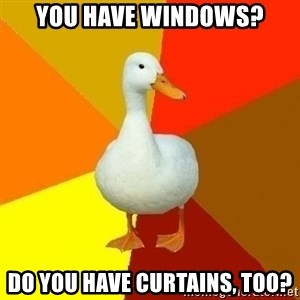 Technologically Impaired Duck - You have windows? Do you have curtains, too?