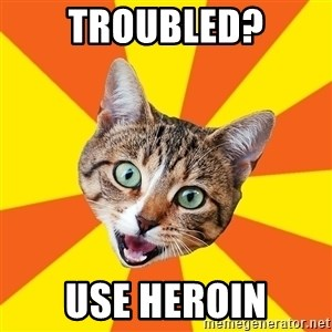 Bad Advice Cat - troubled? Use heroin