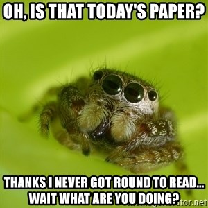 Spiderbro - oH, IS THAT TODAY'S PAPER? tHANKS i NEVER GOT ROUND TO READ... wAIT WHAT ARE YOU DOING?