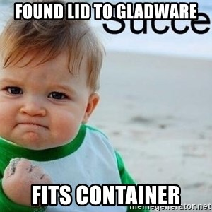 success baby - found lid to gladware fits container