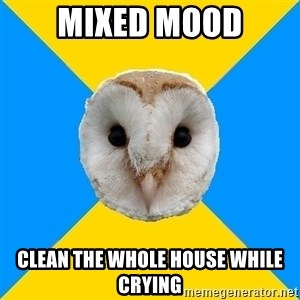 Bipolar Owl - mixed mood clean the whole house while crying