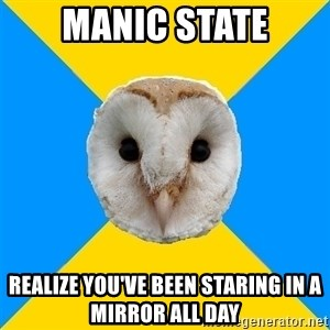 Bipolar Owl - Manic State Realize you've been staring in a mirror all day