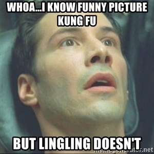 i know kung fu - whoa...i know funny picture kung fu but lingling doesn't