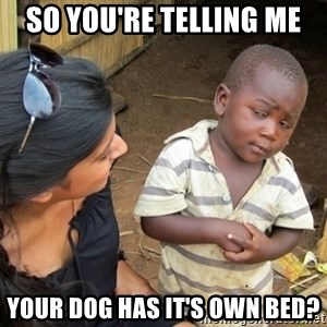 Skeptical 3rd World Kid - SO YOU'RE TELLING ME YOUR DOG HAS IT'S OWN BED?