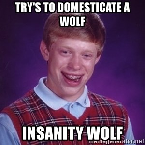 Bad Luck Brian - try's to domesticate a wolf insanity wolf