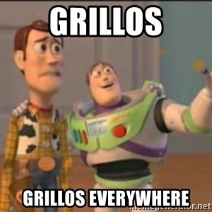 Buzz - Grillos Grillos everywhere