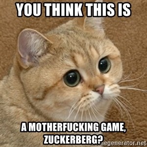 motherfucking game cat - you think this is a motherfucking game, zuckerberg?