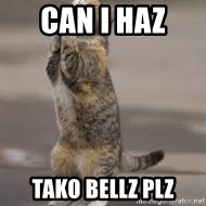 Begging Cat - Can I HAZ  TAKO BELLZ PLZ