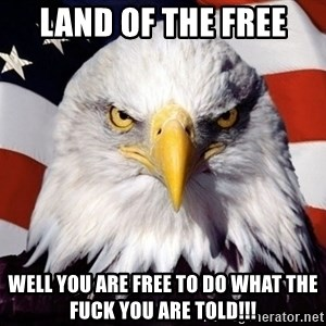 American Pride Eagle - land of the free well you are free to do what the fuck you are told!!!