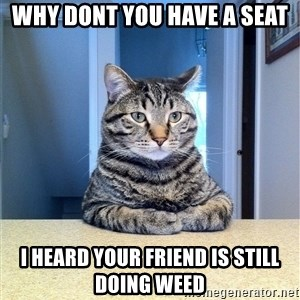 Chris Hansen Cat - Why dont you have a seat I heard your friend is still doing weed