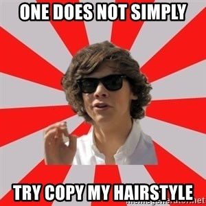 One Does Not Simply Harry S. - One does not simply Try copy my hairstyle