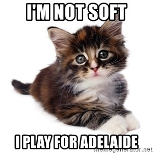 fyeahpussycats - I'm not soft I play for Adelaide