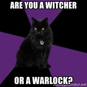 Wiccan Cat - are you a witcher or a warlock?