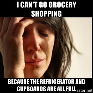 First World Problems - I can't go grocery shopping because the refrigerator and cupboards are all full