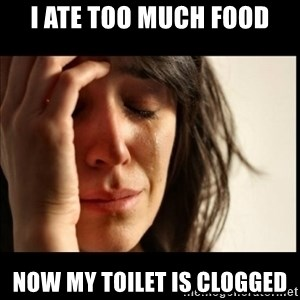 First World Problems - I ate too much food now my toilet is clogged